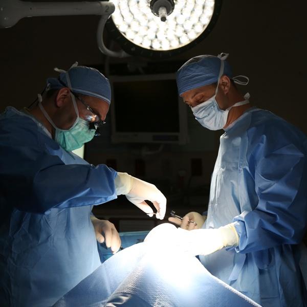 Dr. Schessler and Dr. Conjeski